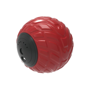 Electric Massage Ball SR-VMB01